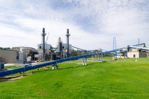 Green energy through a biomass plant